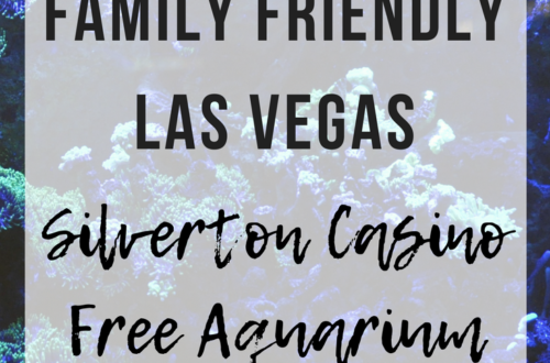 Family Friendly Las Vegas: Silverton Casino Free Aquarium | www.thevegasmom.com