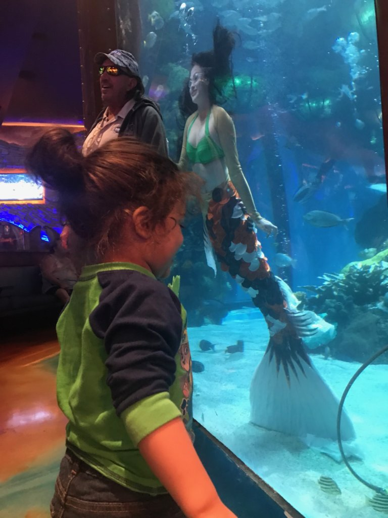 Family Friendly Las Vegas: Silverton Casino Aquarium | www.thevegasmom.com