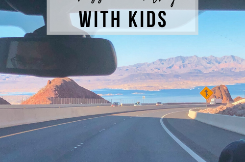 5 Tips for Driving Cross Country with Kids | www.thevegasmom.com